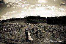Wedding 160